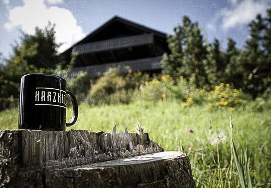 Mountainbike- und Outdoor-Sport-Unterkunft Harz-BnB Werkmeister - Harzkind Garten