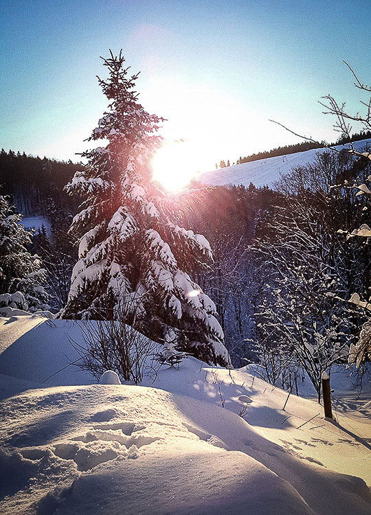 Sankt-Andreasberg-Harz - Sonnenaufgang im Winter