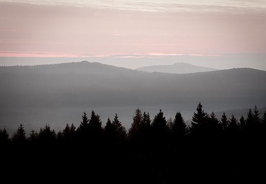 Sonnenberg-Sankt-Andreasberg-Harz - Morgens im Nebel